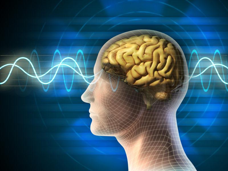 Τα brain foods!